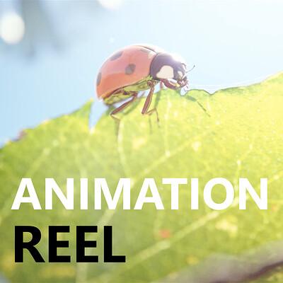 Fabian d abundo animationreel thumbnail
