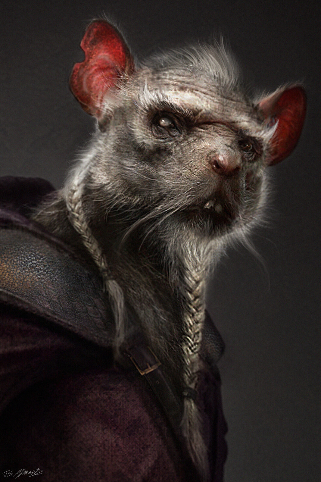 TMNT SPLINTER Design