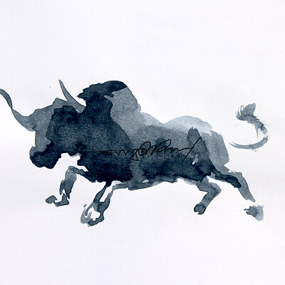 Shah rahman shah rahman bull 004