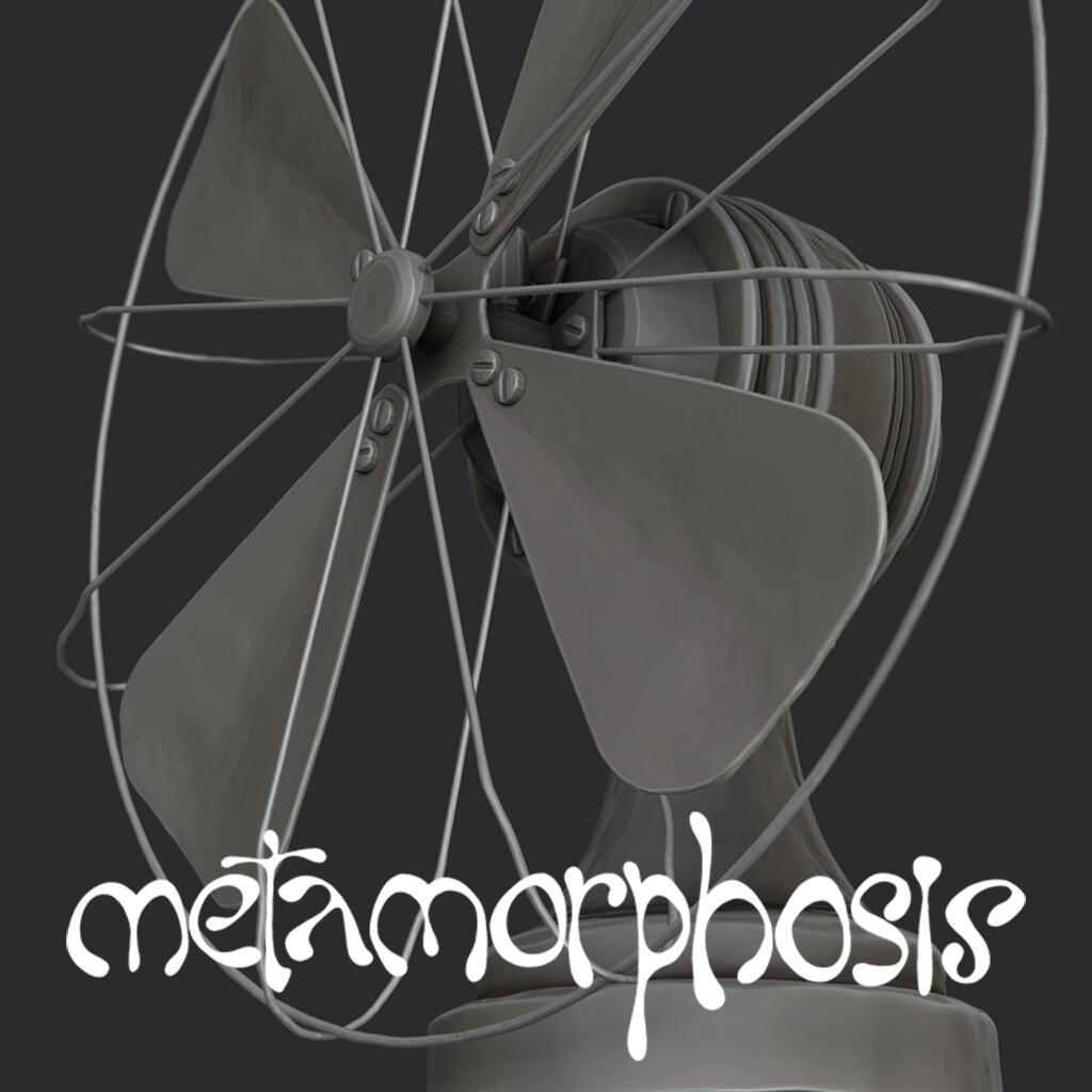 Fan (Metamorphosis)