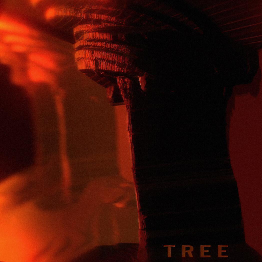 🌲 TREE 🌳