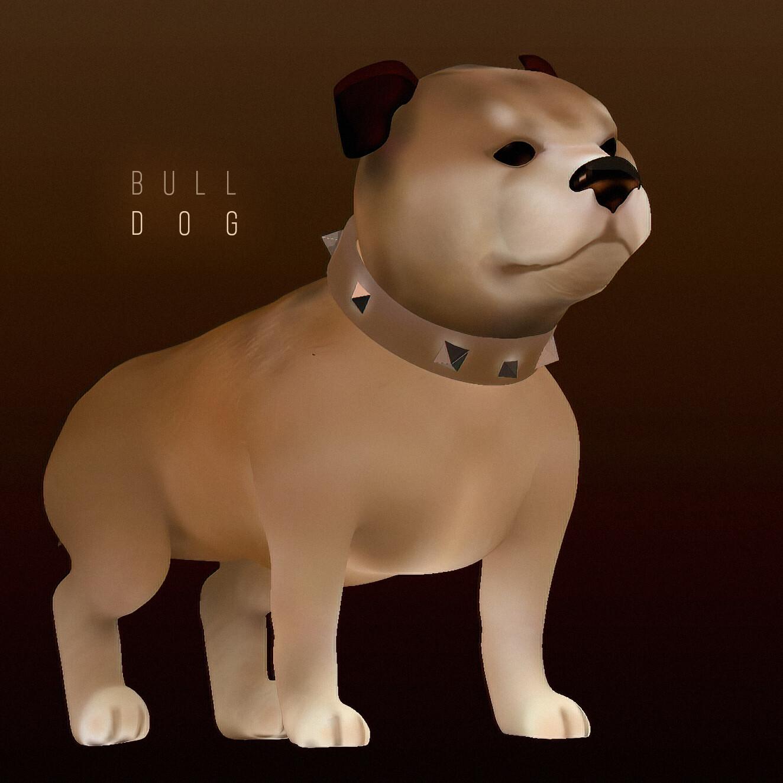 puppy Bull-Dog