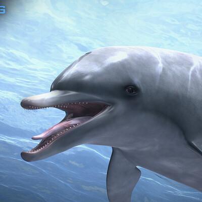 Nonecg 3d nonecg 3d dolphin 01