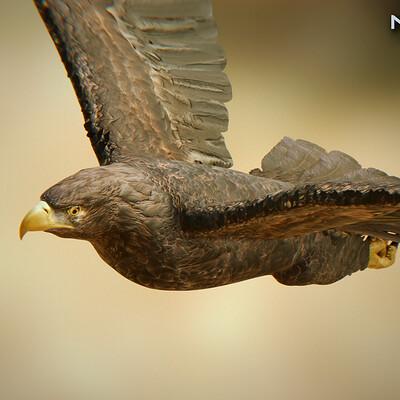 Nonecg 3d nonecg 3d eagle golden 02