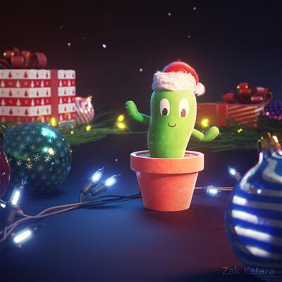 Zak katara zak katara christmas cactus 0 00 00 00