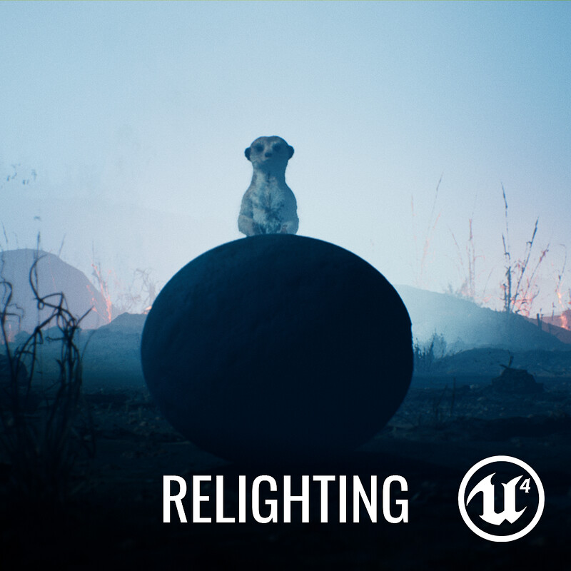 Meerkat Demo - Relighting 02