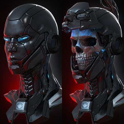 Abrar khan abrar khan skull krusher skull1