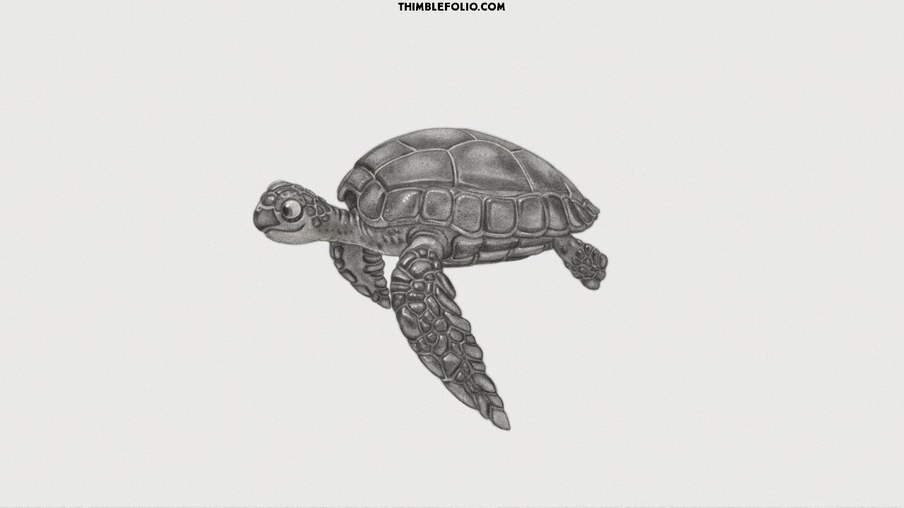Sea Turtle Ebsynth Animation