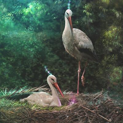 Lopez sylvain lopez sylvain hi light birds