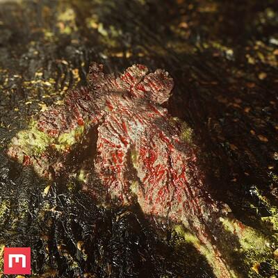 Bloody Stump Texturing