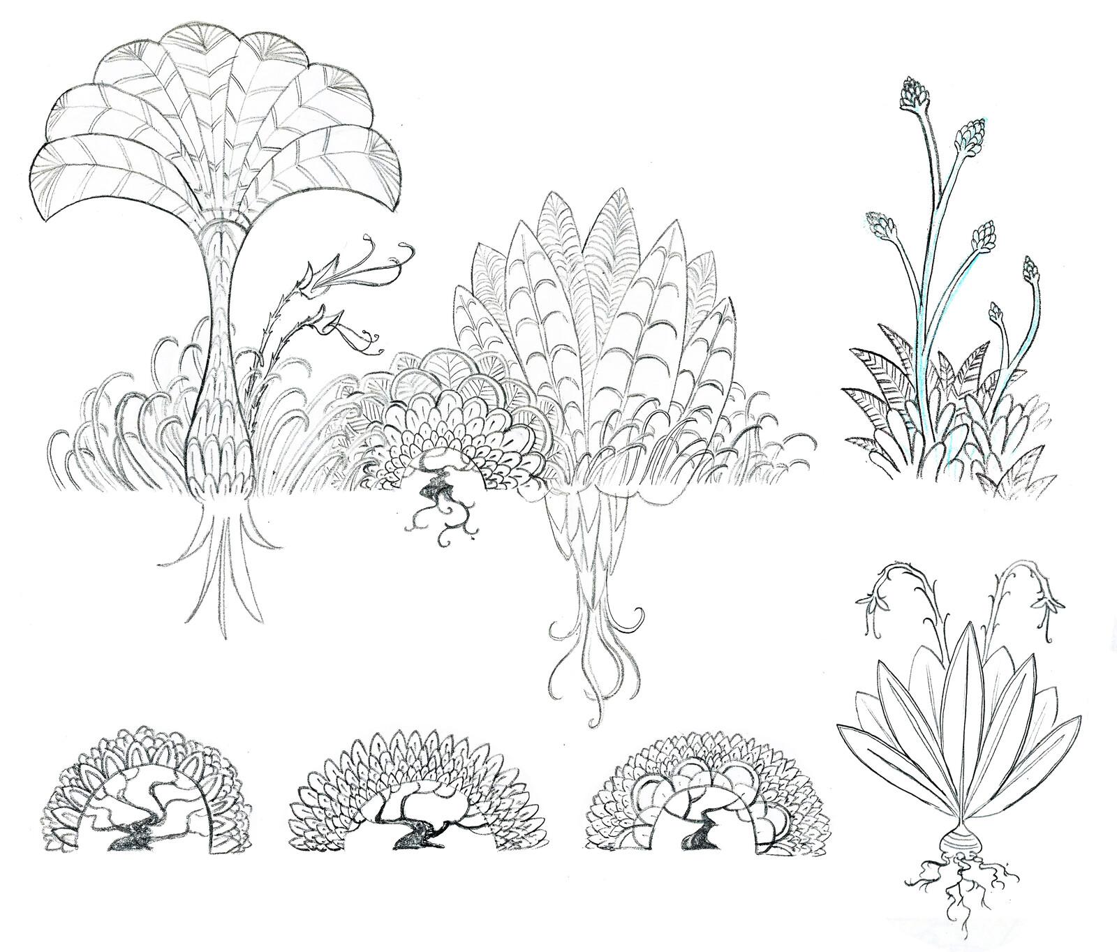 Orboros Flora - Sketch