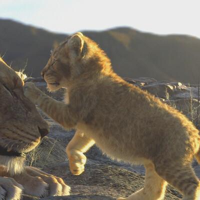 Darko mitev darko mitev lions02
