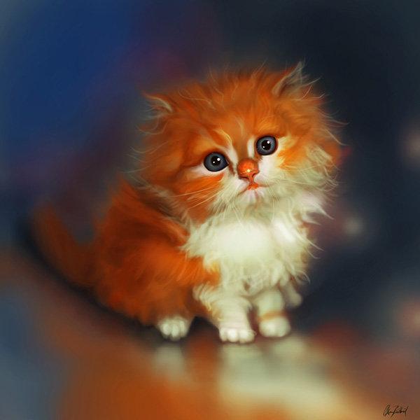 Kitten04 small