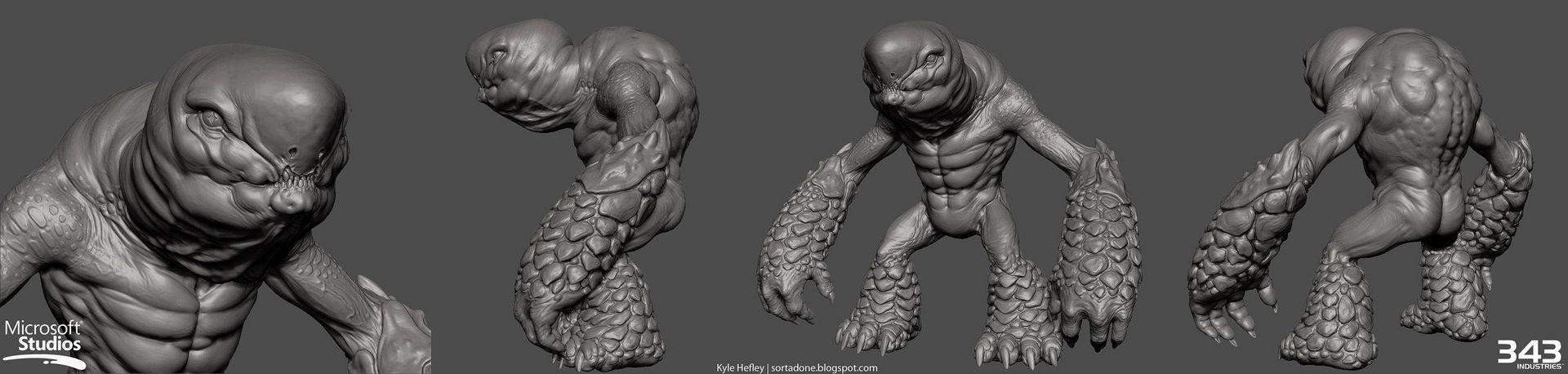 Grunt anatomy