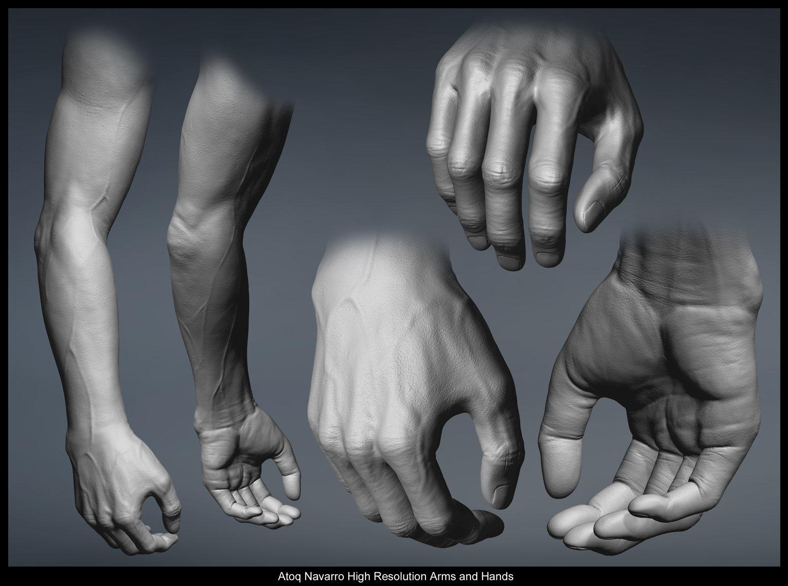 Atoq highres arms