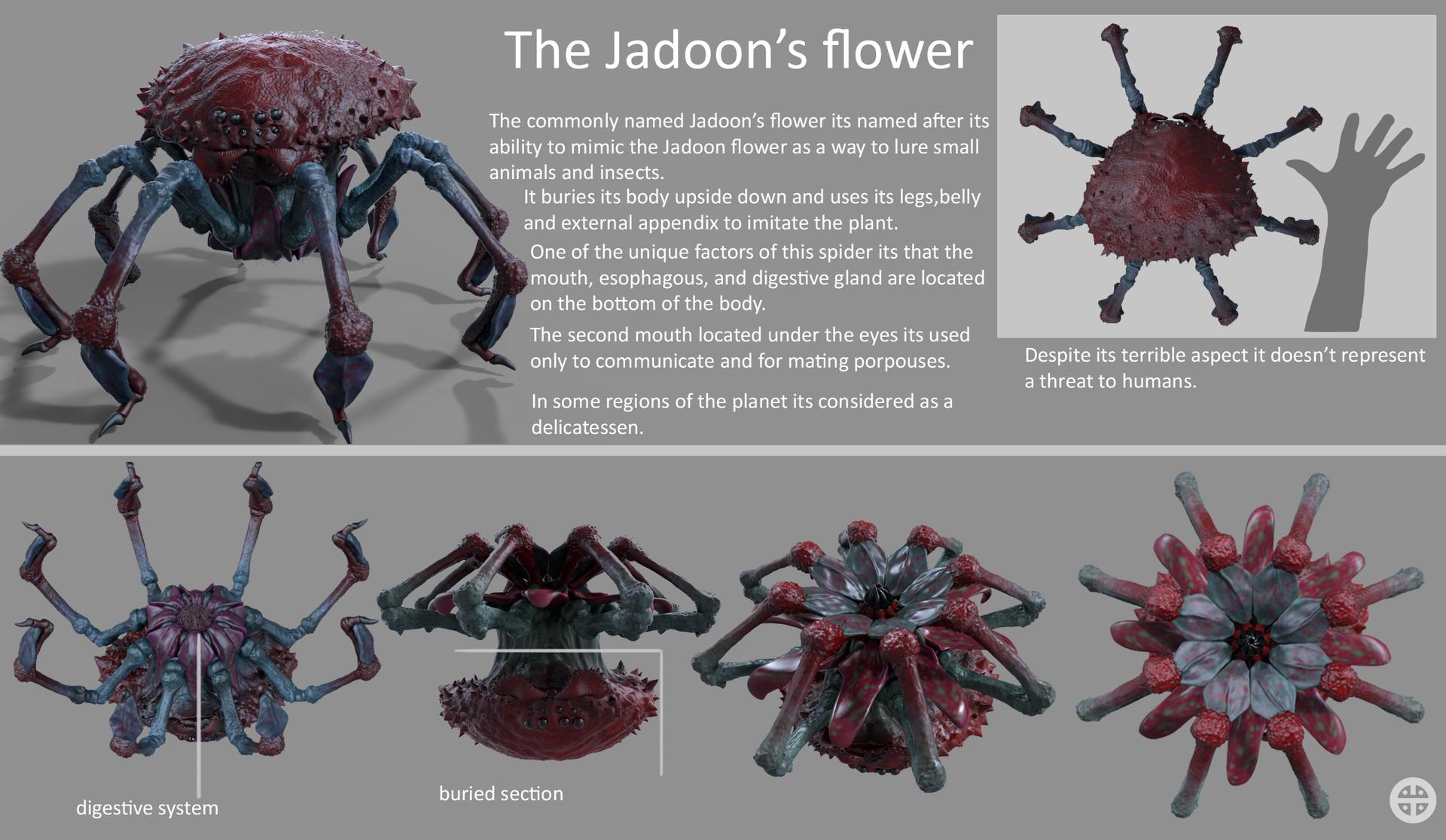 Jadoon flower