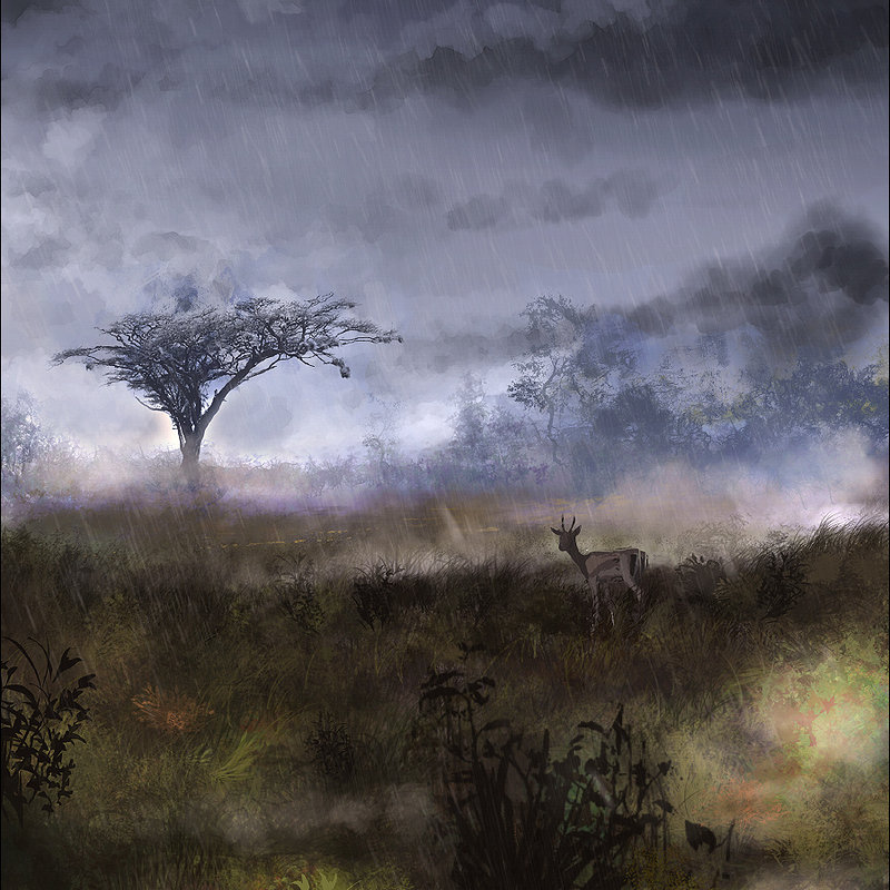 storms in africa