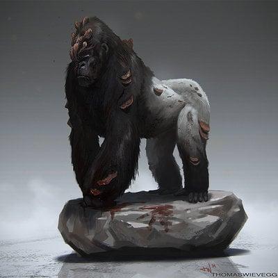 Cordyceps gorilla