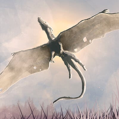 Dragonmisitico