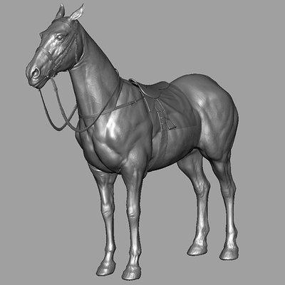 Leon enriquez horse