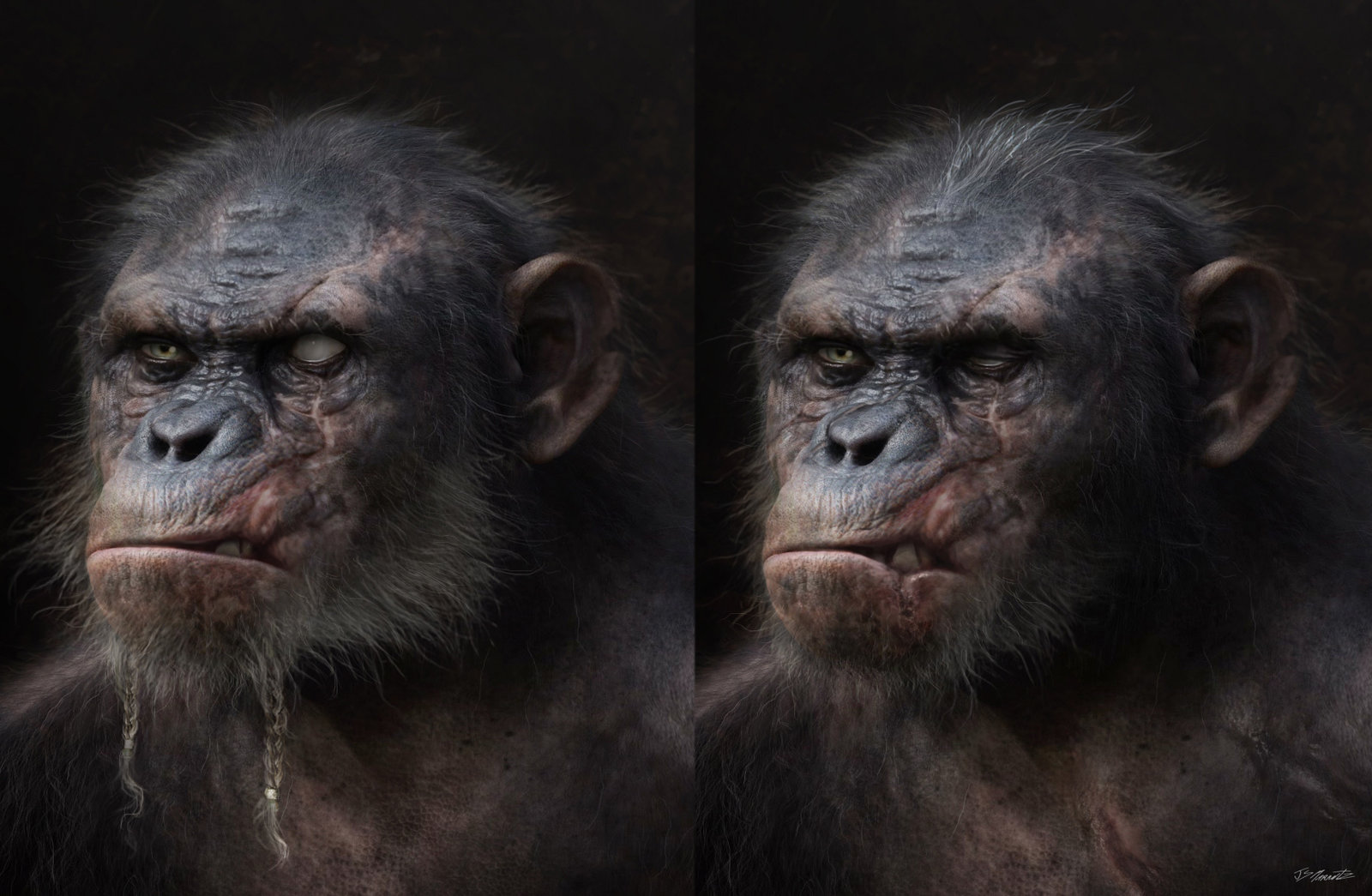 Dawn of the Planet of Apes Koba Design