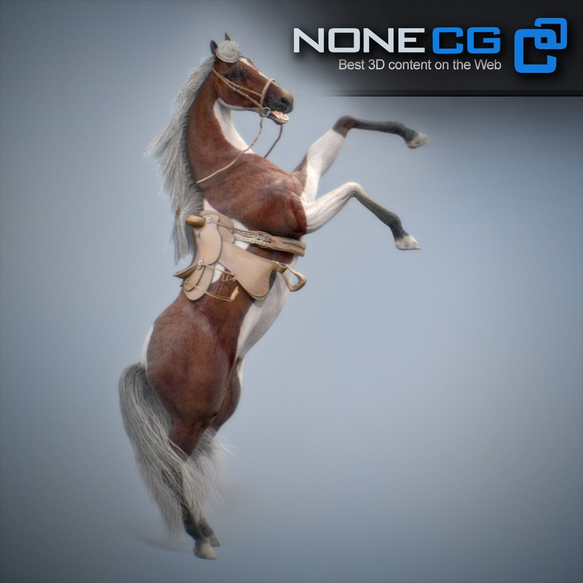 3D Horses Animated by NoneCG