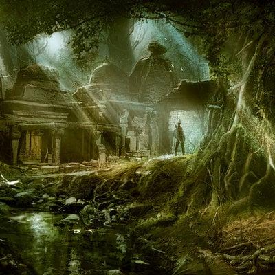 Kishore ghosh forest tem55