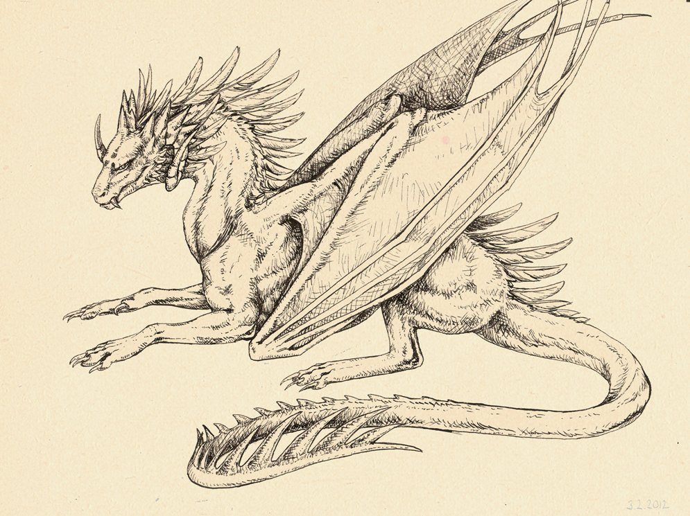 Martina nachazelova ink dragon