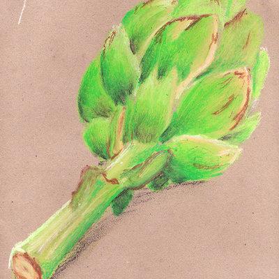 Pete mc nally sketch pastel artichoke