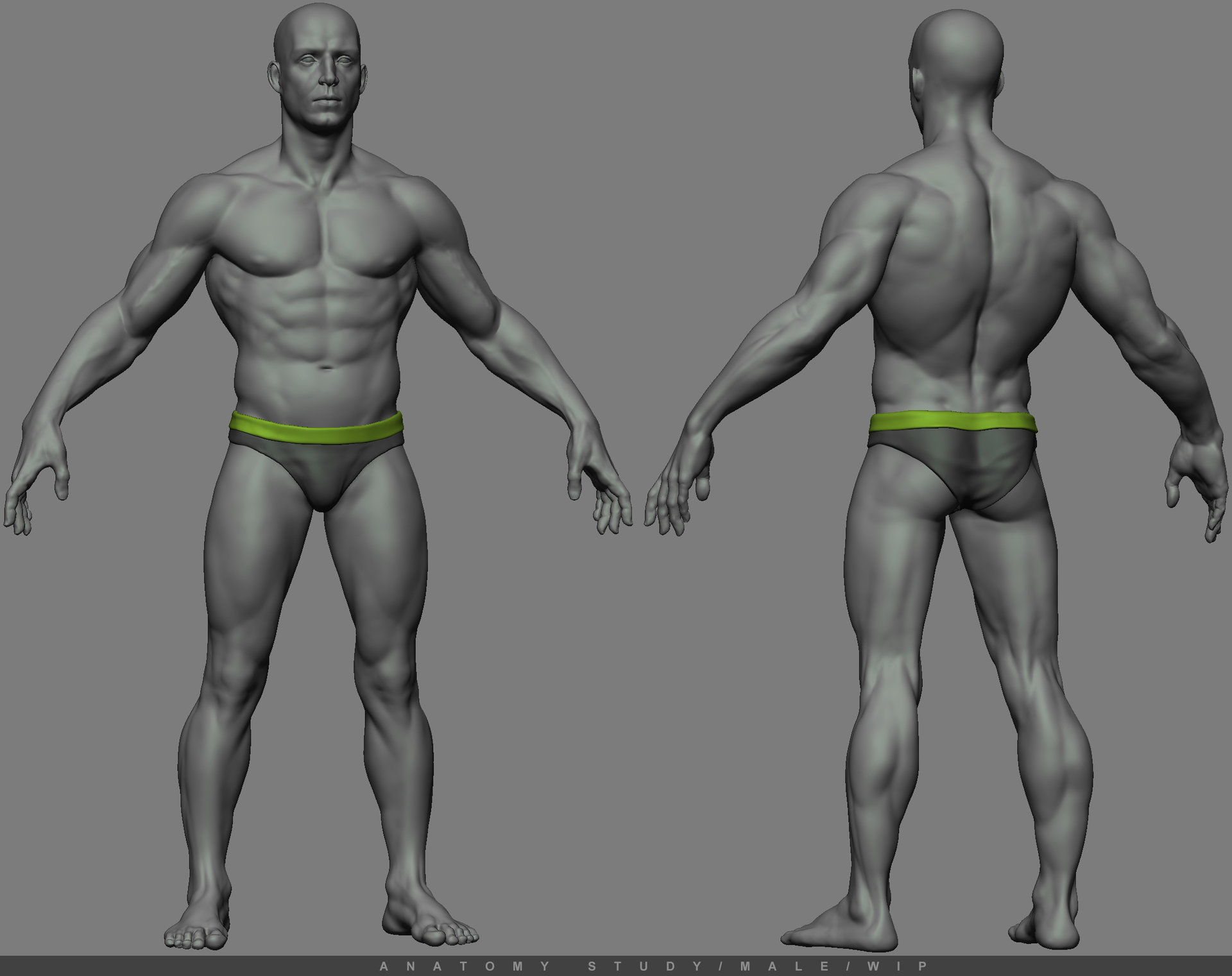 Gurjeet singh anatomy study e