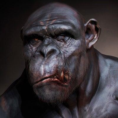 Travis davids chimpfinal render
