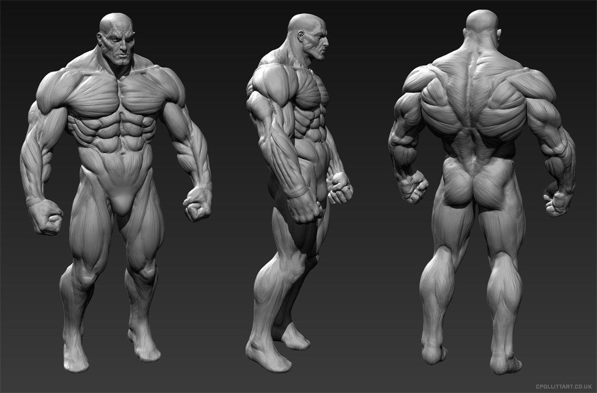 ArtStation - ManRoid Anatomy, Chris Pollitt