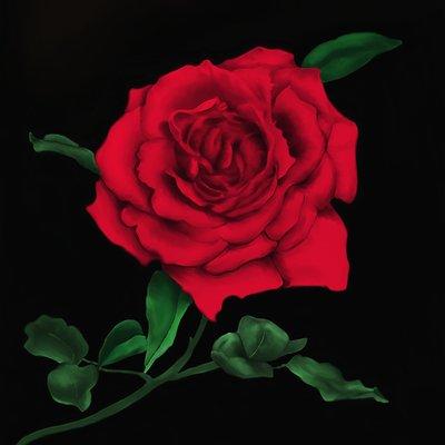 Brinjen russell rose