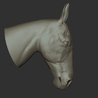 Ganesh poojari horse001
