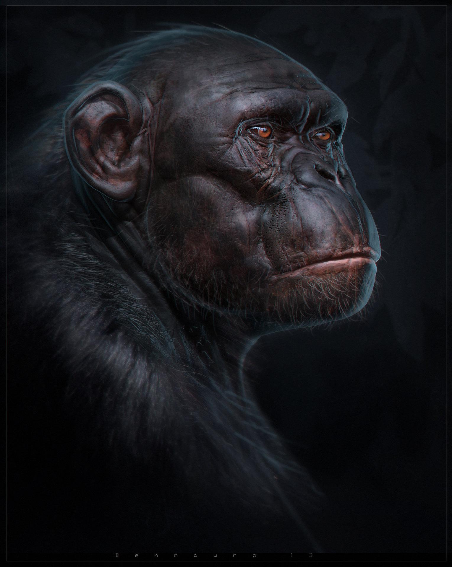 Ben mauro benmauro chimptutorial o o