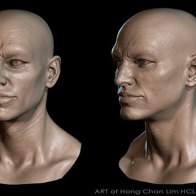 Hong chan lim sculpt render male