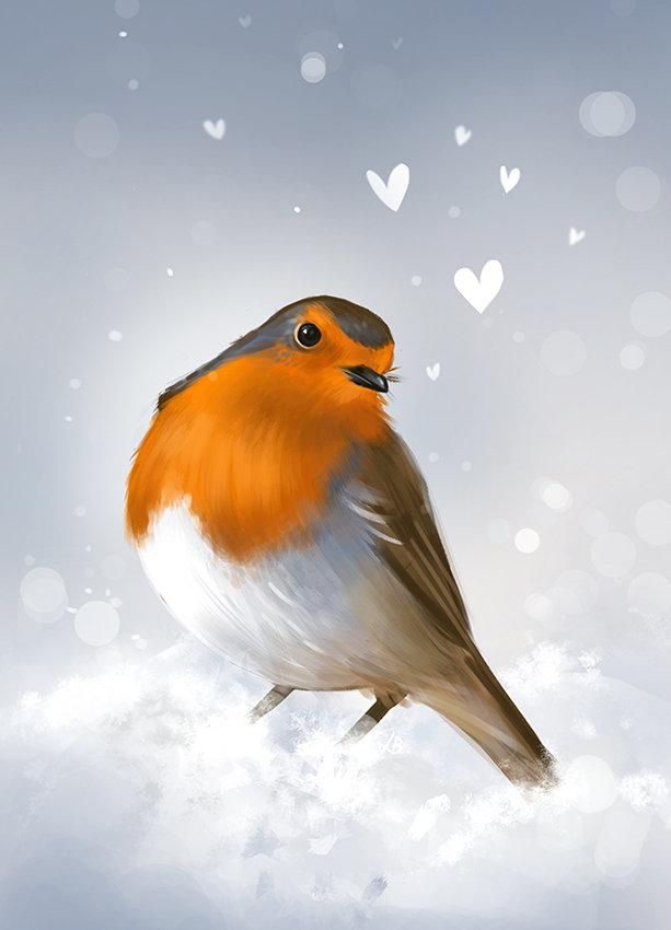 Robin xmas laurab