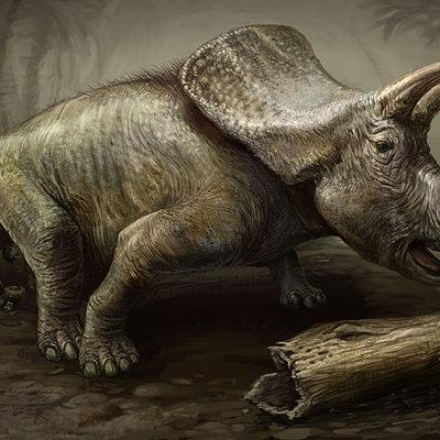 Log in log out torosaurs rebuild stephen somers
