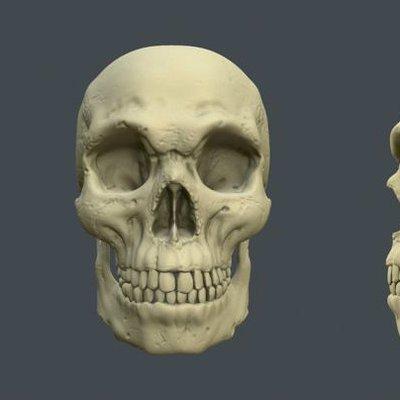 Skull pose