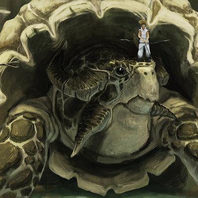 Victor debatisse turtle dragon blog