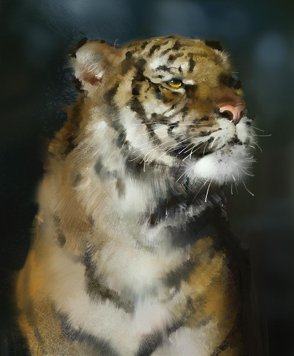 Zhelong xu tiger