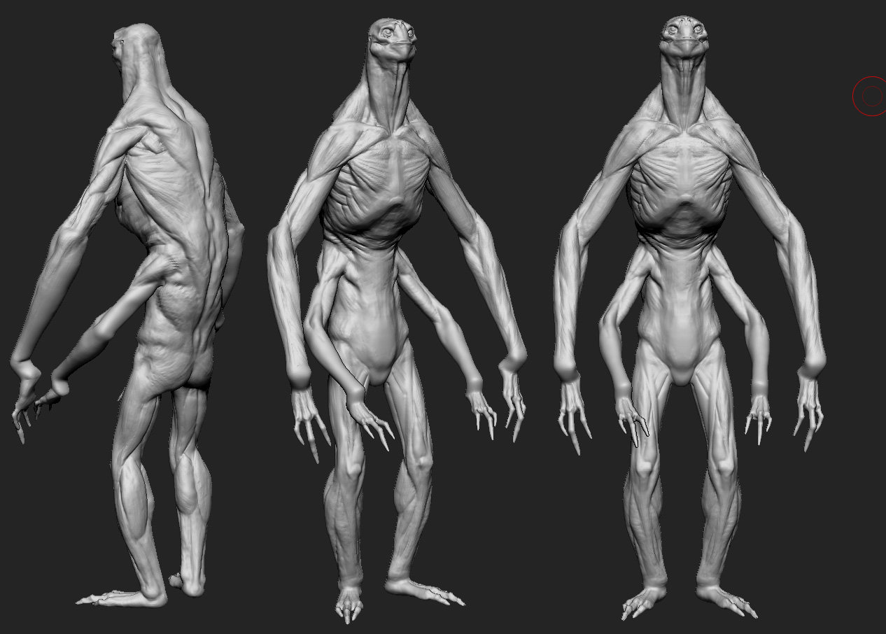 Zbrush Concept ( anatomical research )