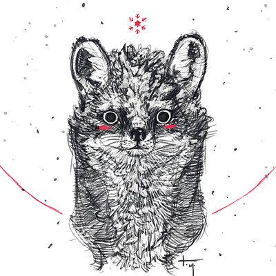 Kian 02 animala fox white 002 1k