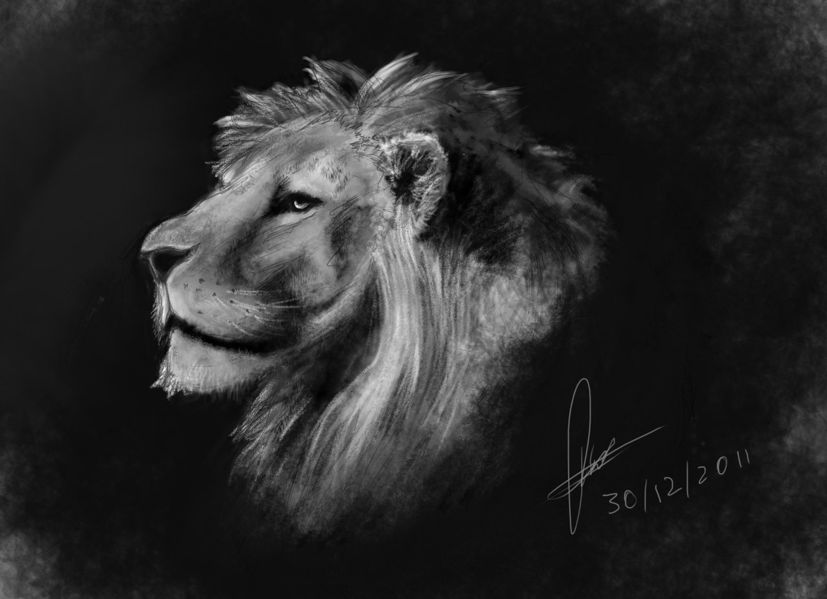 Lion in values