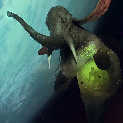 Sergey kolesov elefant in space