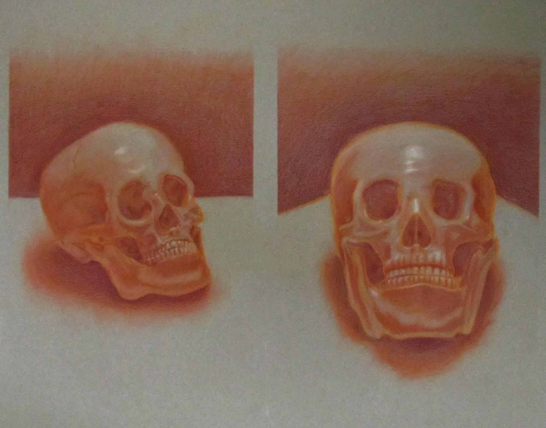 Vincent chiantelli skullspastellprisma