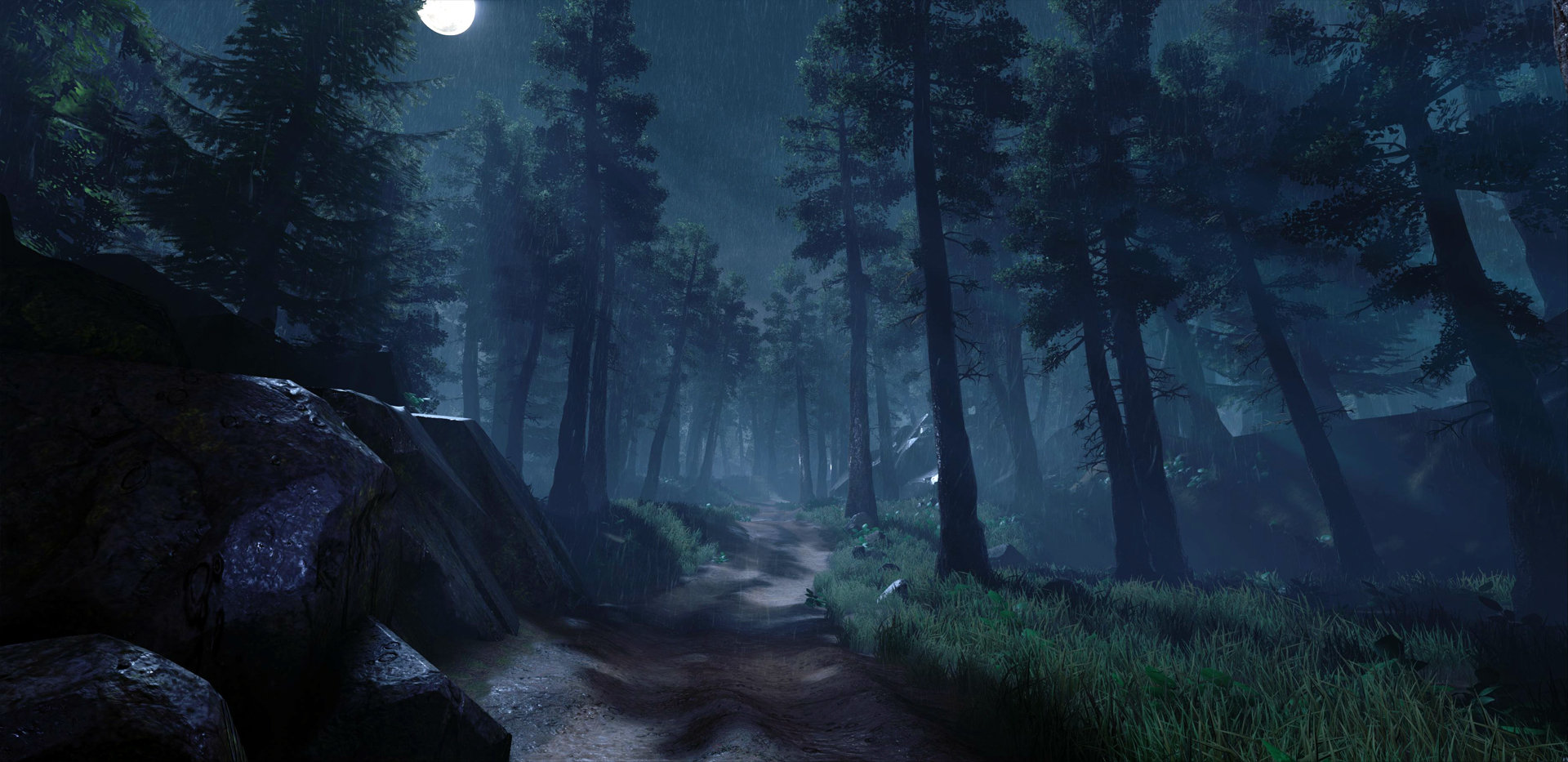 artstation night forest plawius play with us