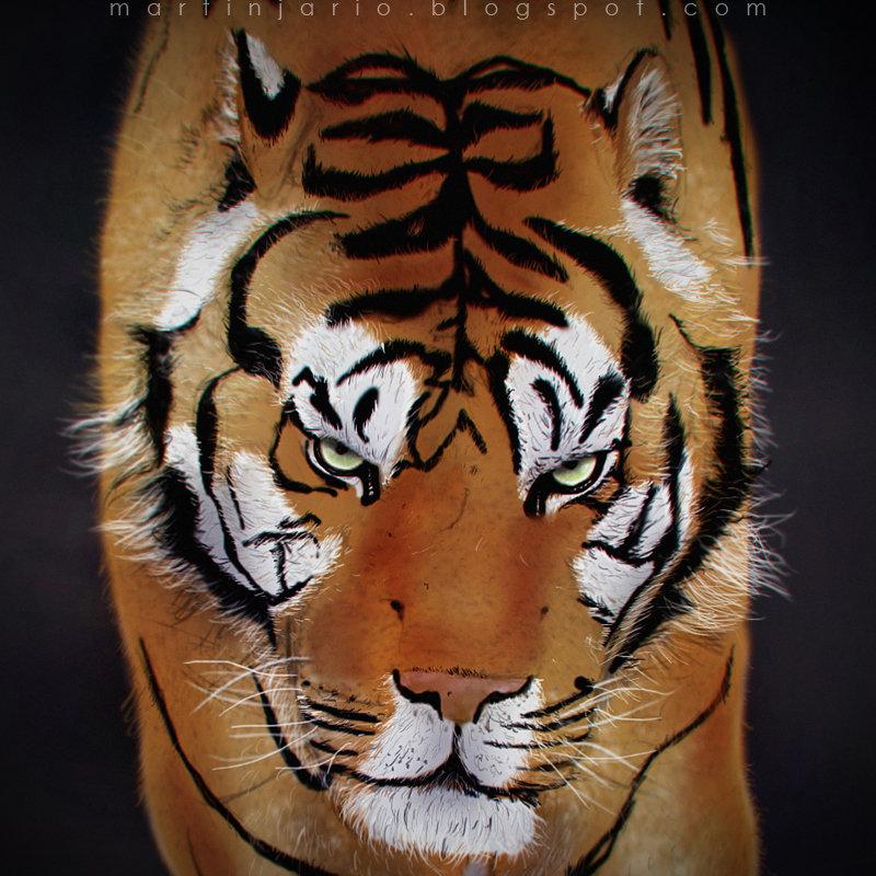 Martin jario martinjario tiger sumatran face