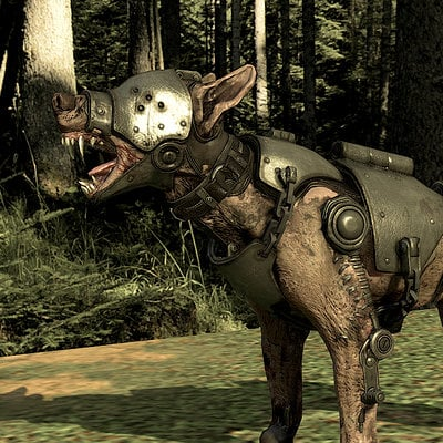 Alex velazquez kampfhund2