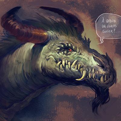 Aurore folny dragon barbu
